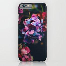 Treasure of Nature I iPhone Case