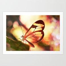 Butterfly 01 Art Print