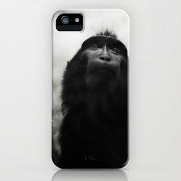 Monkey portrait iPhone Case