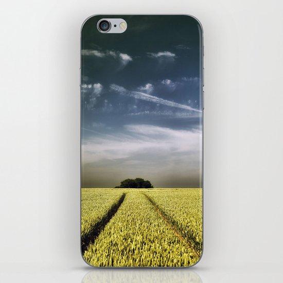 Tree Tracks iPhone & iPod Skin