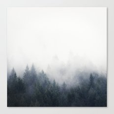 I Don't Give A Fog Canvas Print