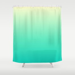 Minimal Gradient Shower Curtain