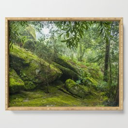 Green forest after raining II Serving Tray