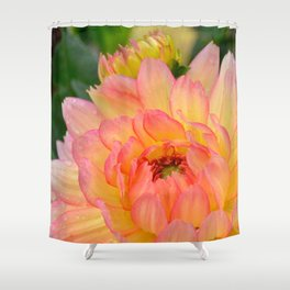 """""""Coral Tipped"""" Dahlia by Teresa Thompson Shower Curtain"""