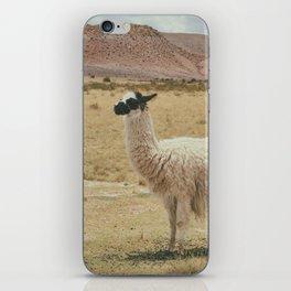 Lama Pampa bolivie iPhone Skin