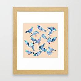 Flock of Pigeons Framed Art Print