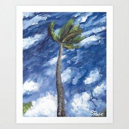 Kailua Palm Art Print