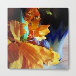 Flor de cempasúchil Metal Print
