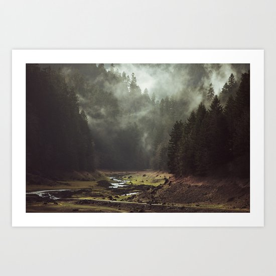 Foggy Forest Creek Art Print