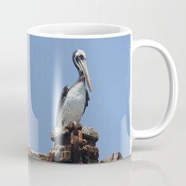 Peruvian pelican (Pelecanus thagus) Coffee Mug