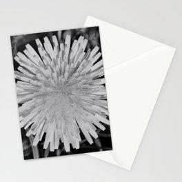 dandy! Stationery Cards