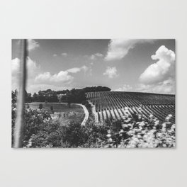 Tuscany on tour Canvas Print