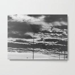 270 | houston Metal Print