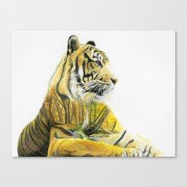 Timberland Tiger Canvas Print