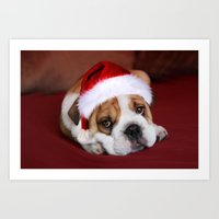 bulldog Art Prints featuring Bulldog by Julie Hoddinott