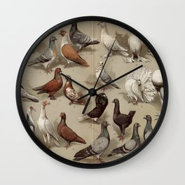 Vintage Pigeon Breeds Chart Wall Clock