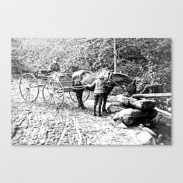Vintage Adirondacks: The Roadside Watering Trough Canvas Print