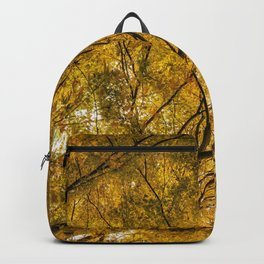 Incandescence Backpack