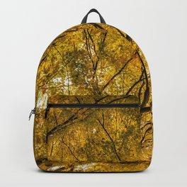 Incandescence Backpack