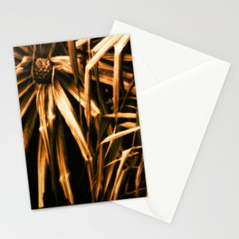 Hala Stationery Cards
