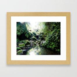 HAWAIIAN WATERFALLS Framed Art Print