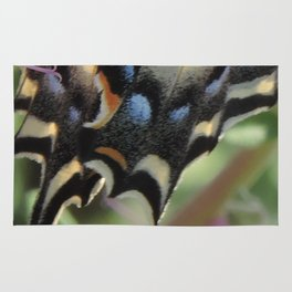 Detail of a Swallowtail Rug