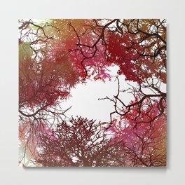 Autumn Treetop Metal Print