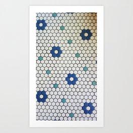 Historic Hexagons Art Print