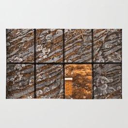Petrified Window Rug