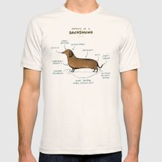 Anatomy of a Dachshund Natural MEDIUM Mens Fitted Tee