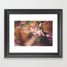 In the Golden Afternoon Framed Art Print