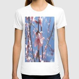 Cielo de La Mancha de Don Quijote T-shirt