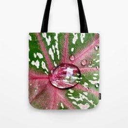 Caladium Calypso - The Garden Series Tote Bag