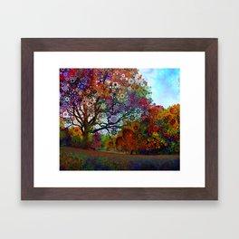 Afternoon Lght Framed Art Print