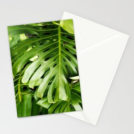 Monstera Leaf Stationery Cards