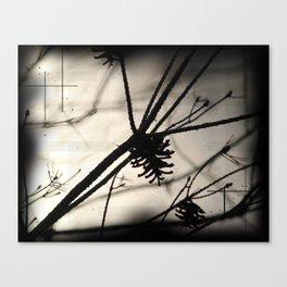 pine tree shadows Canvas Print