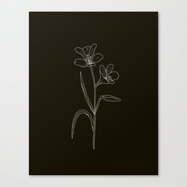 Amancay Wildflower in black Canvas Print