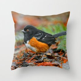 Profile of a Spotted Towhee Throw Pillow
