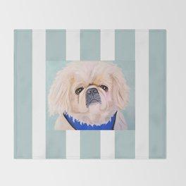 Peke Augie Blue Harness Throw Blanket