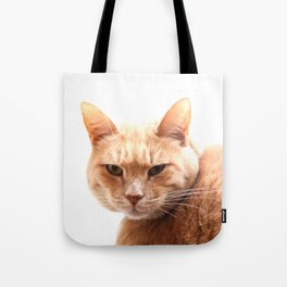 Red cat watching Tote Bag