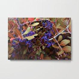 Alien landscape autumn berry surreal plants Metal Print