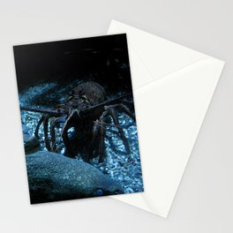 Lobster and the Eels Stationery Cards