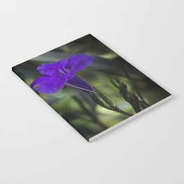Violet flowers Notebook