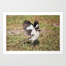 Wing Flash Art Print