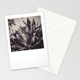 Ti Leaves Stationery Cards