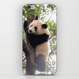 Chongqing Baby Giant Panda   Bébé Panda géant iPhone Skin