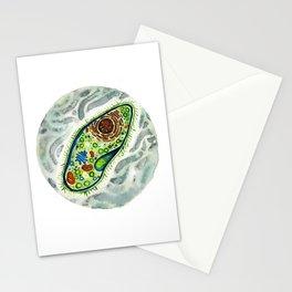 Paramecium Stationery Cards
