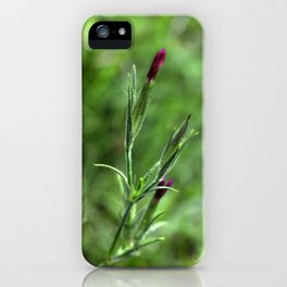 Pink Lipstick Flower Buds iPhone Case