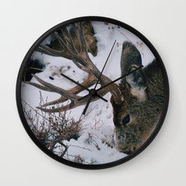 Digging deer Wall Clock