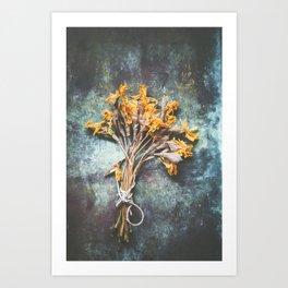 Bunch Of Daffodils Art Print